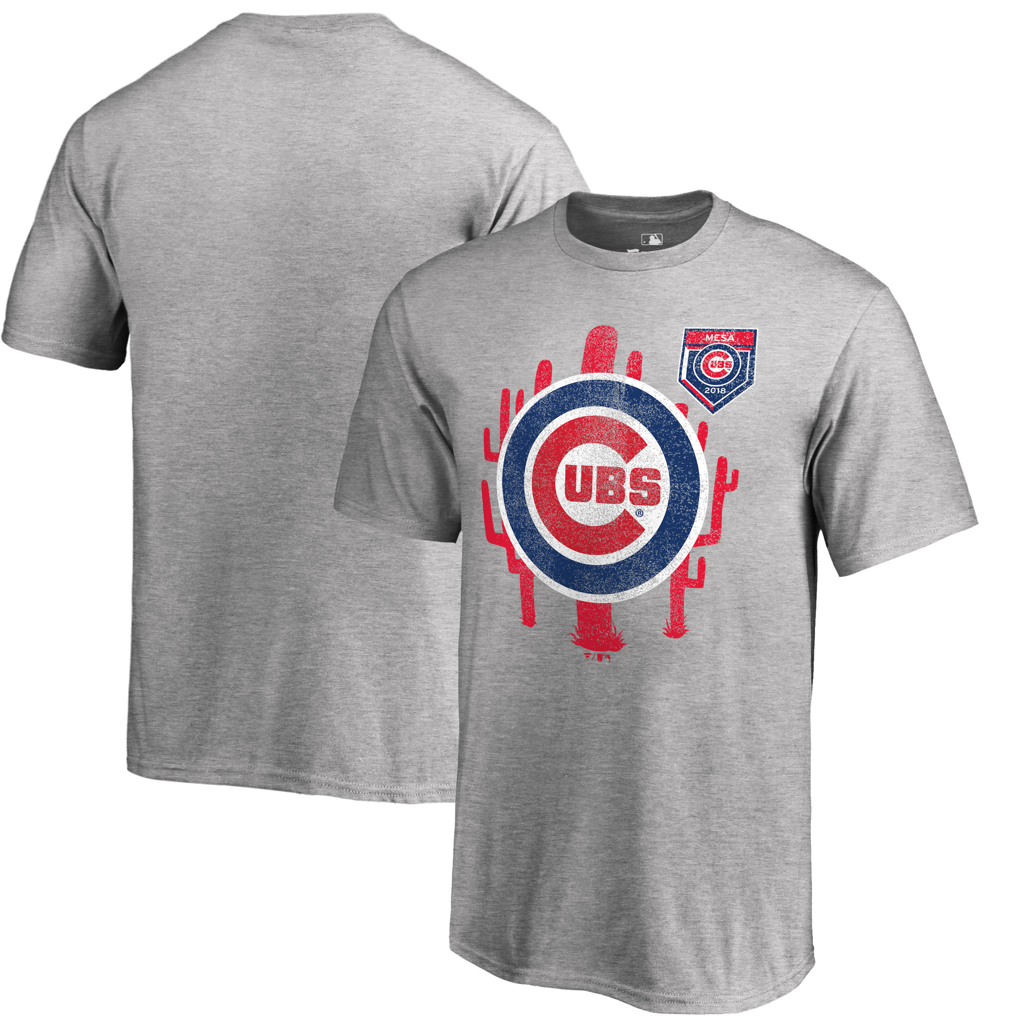 Men's Chicago Cubs Fanatics Branded 2018 MLB Spring Training Vintage T-Shirt – Heather Gray